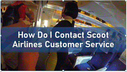 2020-06-18how-to-contact-scoot-airlines.jpg